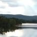 Nisse lindberg