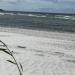 Beachlover