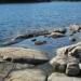 Havs Susen