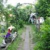 Bilder från Gubbens Trädgårdscafé