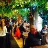 Bilder från Restaurang Tiger
