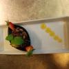 Bilder från Restaurang & Pizzeria Skanör