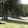 Bilder från Hennans Camping