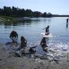 Bilder från Kilsviken