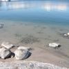 Bilder från Östemarsfladen, Nåttarö