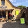 Bilder från Bok-Caféet Porten