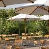 Bilder från Rosendals Trädgård
