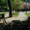 Bilder från Café Birger No 76