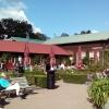 Bilder från Rosenkaféet i Trädgårdsföreningen