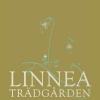Bilder från Linneaträdgården