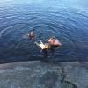 Bilder från Skärsjön