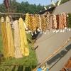 Bilder från Ekehagens Forntidsby