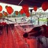 Bilder från Restaurangbryggan Gåshaga Marina
