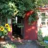 Bilder från Pumpans Café