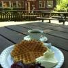 Bilder från Hillesgårdens Café