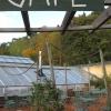 Bilder från Brunnsvikens Trädgård och Café