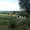 Bilder från Källebackens Stugby