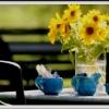 Bilder från Pumpans Café och Restaurang