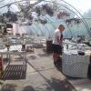 Bilder från Bertshults Café (Sammels gårdscafé)