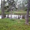Bilder från Årrenjarka Fjällby