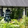 Bilder från Café Madame Blå