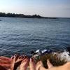 Bilder från Abborrsjön