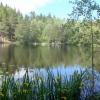 Bilder från Barnsjöbadet