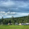 Bilder från Jannesland