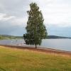 Bilder från Frykens Pärla, Lysviks camping