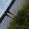 Bilder från Gissen