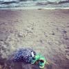 Bilder från Gullsands havsbad