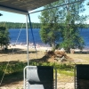 Bilder från Mangenbadens Camping