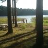 Bilder från Sandviksbadet, Göksjön