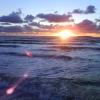 Bilder från Havsbaden
