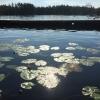 Bilder från Målilla, Hesjön