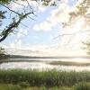Bilder från Mammas vik, Hjälmsjön