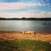 Bilder från Holmedalssjön