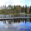 Bilder från Hundsjön