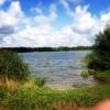 Bilder från Häljasjön