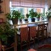 Bilder från Helenas Kök och Catering