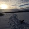 Bilder från Högsjön