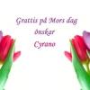 Bilder från Cyrano Borås