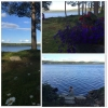 Bilder från Näs, Jangen