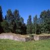 Bilder från Ryds kyrkoruin
