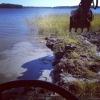 Bilder från Camp Österfärnebo