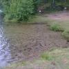 Bilder från Klarsjön
