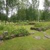 Bilder från Ådals-Lidens kyrkoruin