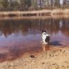 Bilder från Kolarpssjön