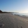 Bilder från Borrby strand, Kyhl