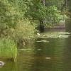 Bilder från Lafsenbadet, Lafssjön